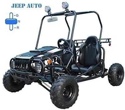 Brand new TAO TAO Brand Jeep Auto Style 110cc Engine Gokart with reverse